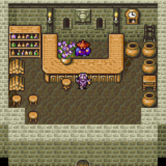 Mysidia's Item shop (GBA).