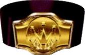 FF7 Champion belt