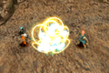 FFIX Protect.png