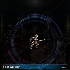 Foot Soldier (2).