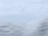 Skill (Final Fantasy IX)