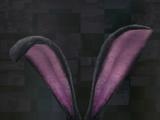 Lightning Returns: Final Fantasy XIII adornments