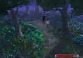 Forest of solitude.png