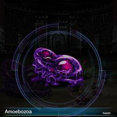 Amoebozoa.