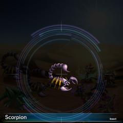 Scorpion (2).