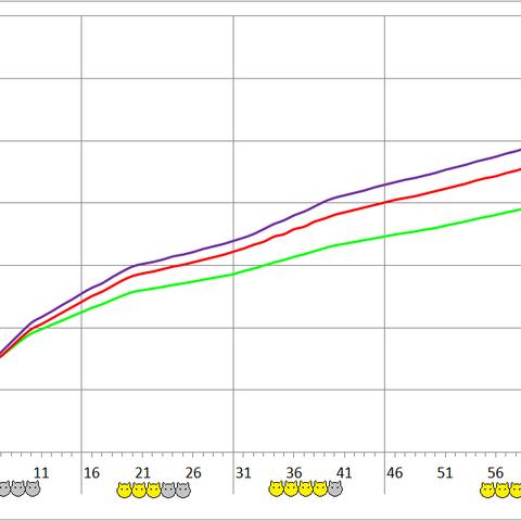 Albino Lobo development chart.