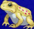 TAY PSP Biggs Frog Portrait