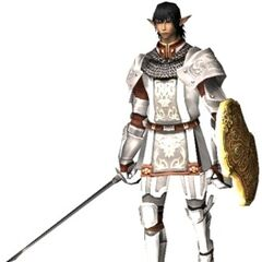 An Elvaan Paladin in <i><a href=