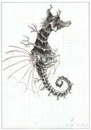 Hippocampyx FFIII Artwork
