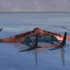 <i>Tiny Bronco</i> in the sea.