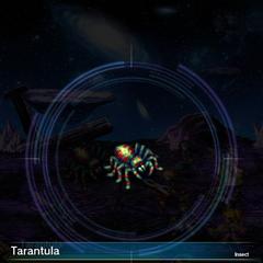 Tarantula (2).