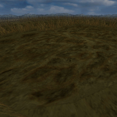 Another marshland battle background on the world map.