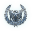 FFXV silver sidequest trophy icon