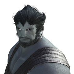 Roegadyn | Final Fantasy Wiki | FANDOM powered by Wikia