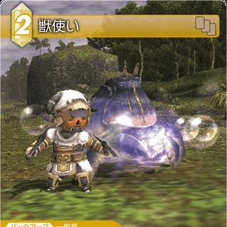A Tarutaru as a Beastmaster.