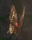LRFFXIII Twilight Butterfly