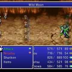 Wild Moon.