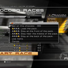 Chocobo races menu.