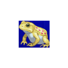 Frog portrait for Edward and Wedge in <i><a href=