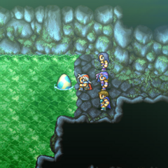 Wyvern Egg placed in the springs (PSP).