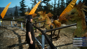 FFXV-Wiz-Chocobo-Post