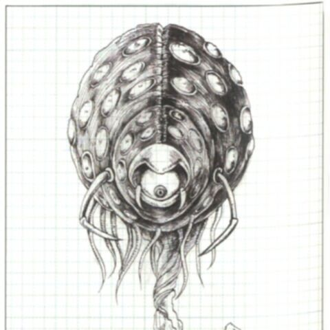 Concept artwork of the Roper.