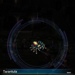 Tarantula (1).