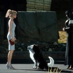 Лунафрейя встречается с Приной и Умброй в <i>Final Fantasy XV</i>.