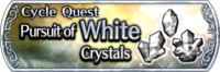 DFFOO Cycle Quest White banner GLS