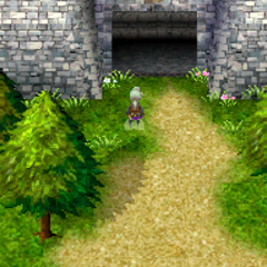 The entrance (DS).