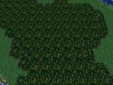 Бомбовый Лес
