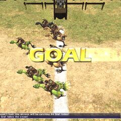 The lead chocobo has crossed the finish line.