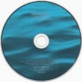 FGD Disc