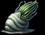 Aquathorn-ffv-ios