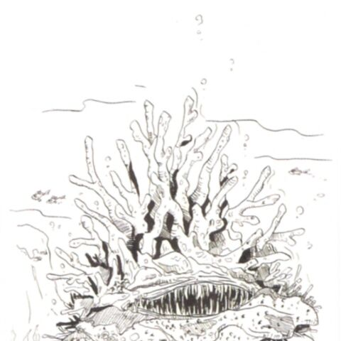 Concept artwork of the Charybdis.