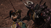 FFXIV Hien vs Elidibus