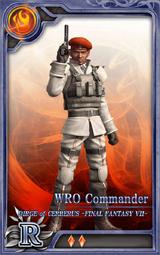 DoCFF7 WRO Commander R F Artniks
