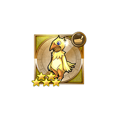 Chocobo Suit in <i><a href=