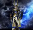 DFF2015 Guerriero della luce costume 1