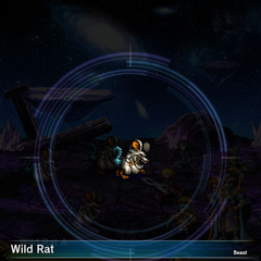 Wild Rat (2).