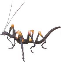 Critical Bug ffx-2
