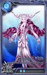 D012 Transient Witch R I Artniks