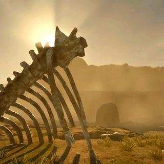 Скелеты животных.