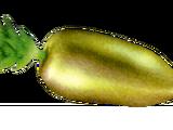 Erba (oggetto)