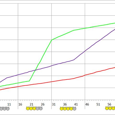 Imp development chart.