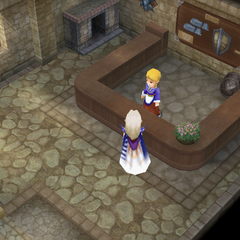 Armor shop (DS/iOS).