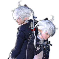 Alphinaud and Alisaie.