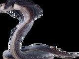 Midgardsormr (Final Fantasy XV)