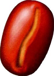 File:Sahara Nut.png