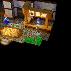 Магазин вещей (DS).